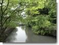 神橋よりの堀